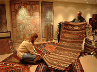 Carpet Investment