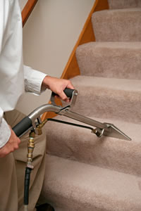 One step at a time, eventually every square inch is carefully cleaned by Coffey Clean Care